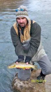Brown trout on the ruby river
