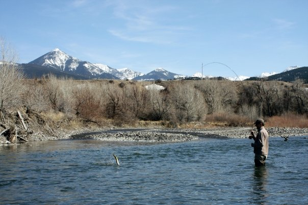 Montana fly fishing in April