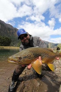 """A Nice 23"""" Brown from the Upper Paloma"""
