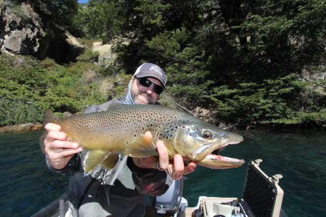 """A Monster 25"""" Brown Caught On Yet Another Mouse Pattern on Lago Paloma"""