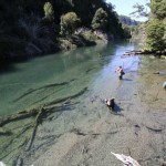 Fly Fishing the Outlet of Lago Elizidad