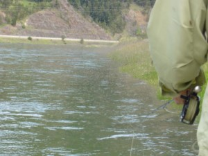 mothers day caddis in Montana