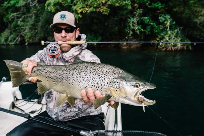 stripping streamers for big browns