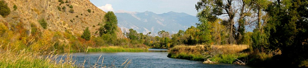 East gallatin river fishing report montana angler for Gallatin fishing report