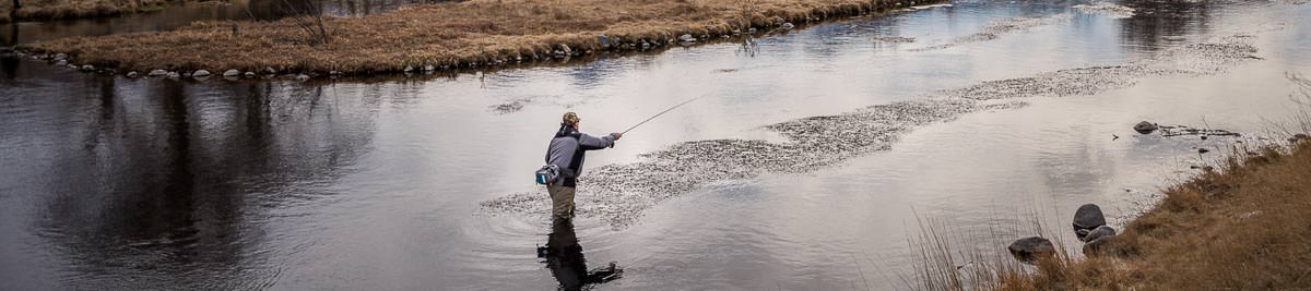 Fly fishing Montana's spring creeks