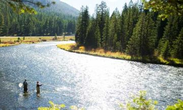 Gallatin river fly fishing guides trips lodges for Gallatin fishing report
