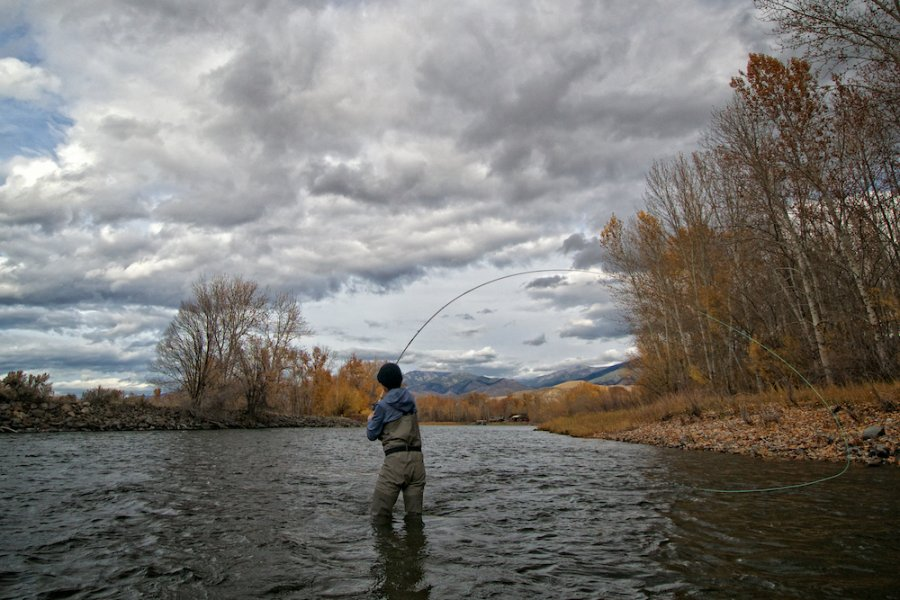 Introduction to Trout Spey Fishing in Montana
