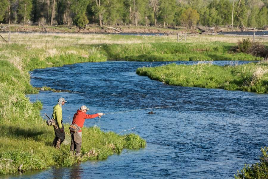 Guide to Fishing Depuy's Spring Creek in April
