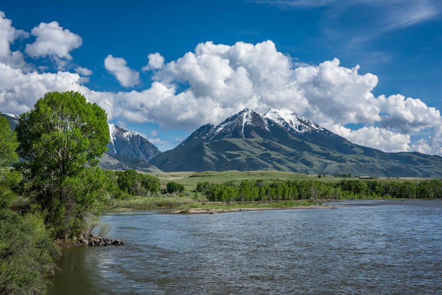 April and may hatches on the yellowstone river spring fly for Fly fishing yellowstone river