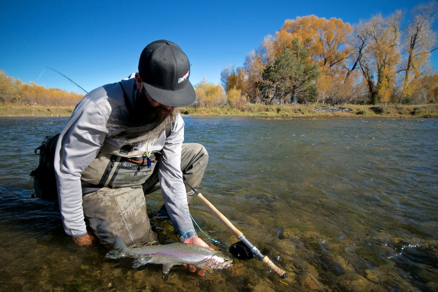 The Best Trout Spey Flies for Montana