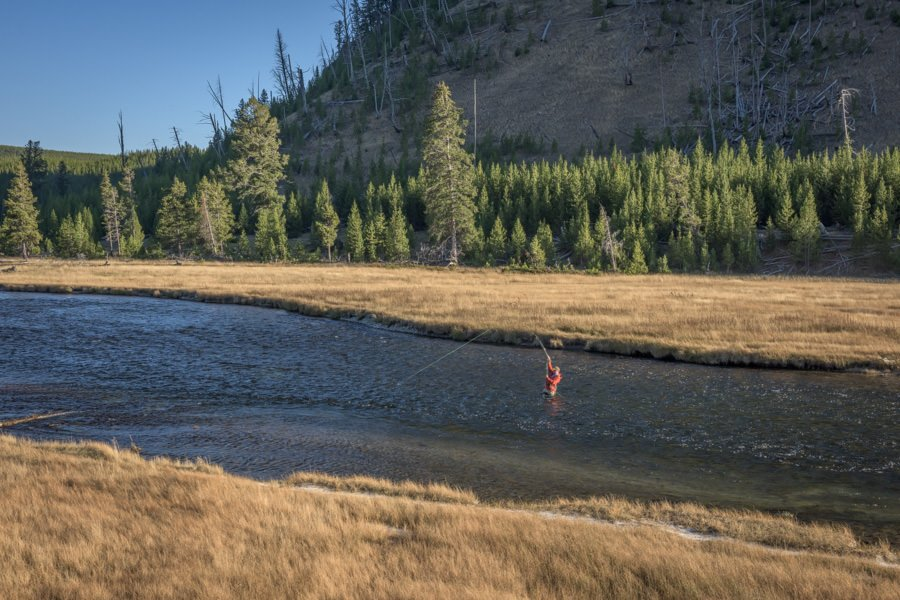 Madison River in Yellowstone Park