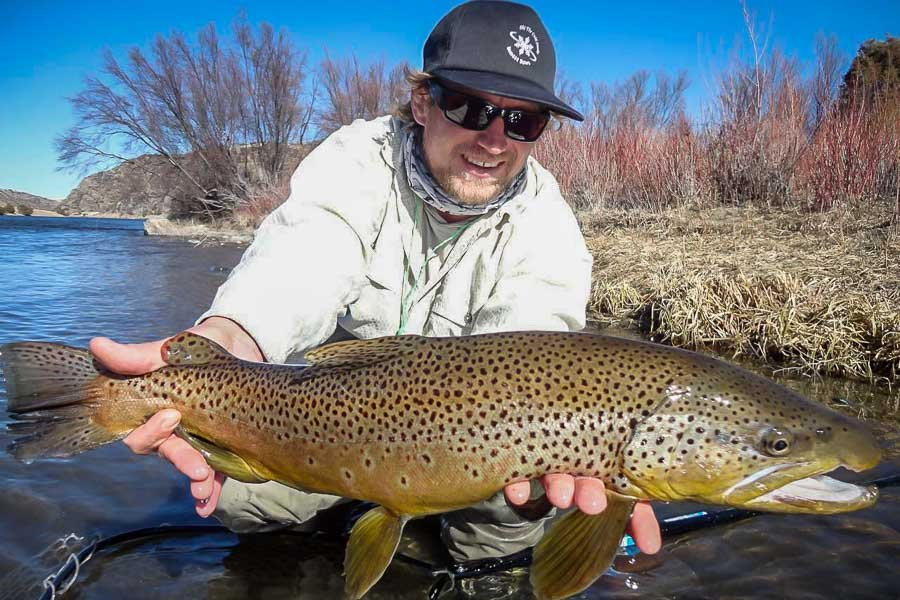 Big Lower Madison Brown