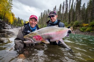 Trophy British Columbia wild steelhead