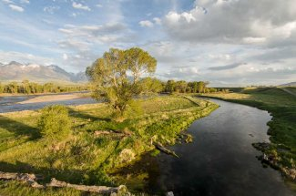 Depuy's spring creek Livingston Montana