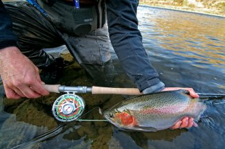Hairwing Flies for Summer and Fall Steelhead