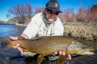 Fly Fishing for Large Trout in Montana