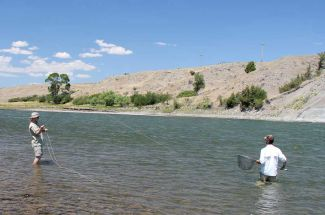 Montana Fly Fishing For Carp