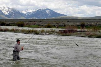 Montana April Fly Fishing