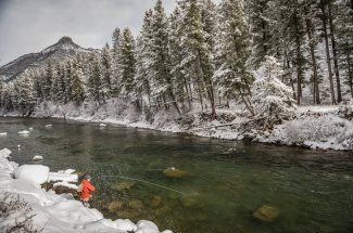 Montana Fly of the Month: February