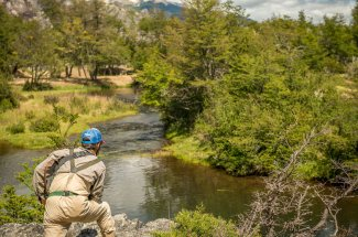 Hunting for spring creek browns