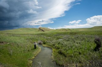 Spring Creek fishing on a private Montana Ranch