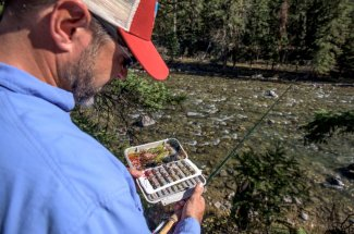 Selecting the right fly on the Gallatin River