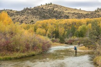 Ruby river fishing trips