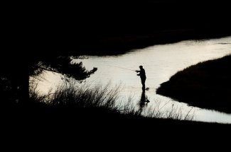 Fisherman on the Madison River