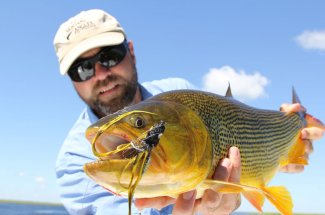 Big flies equal big golden dorado