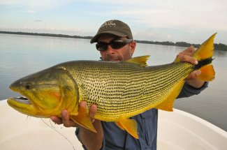 This angler is happy to hold this large golden dorado