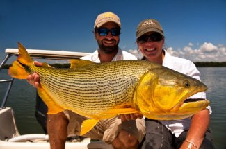 A trophy Golden Dorado