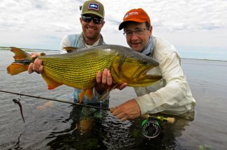 Another great golden dorado