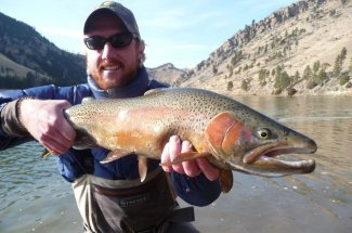 Big rainbows in Montana
