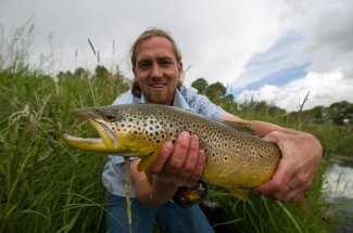 Great brown trout fishing in Montana