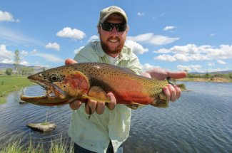 Extra large cutthroat trout
