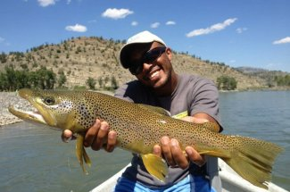 Brown trout fishing on the Yellowstone River