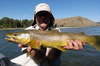 Fly fishing for trophy browns