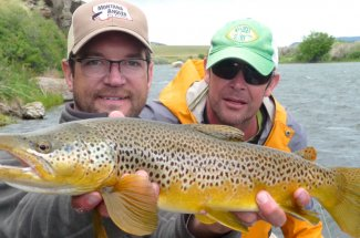 Montana has the best brown trout fishing