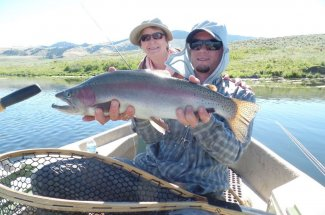 Big bad boy rainbow caught in Montana