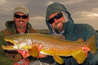Fly fishing for trophy brown trout in Montana