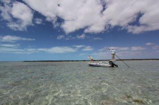 In search of bonefish