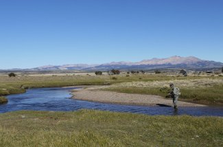 Spring creek fishing near Balmaceda