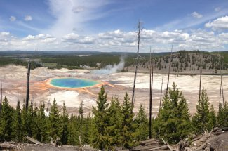 geysers and pools in YNP