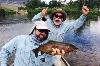 Rainbow trout in Montana