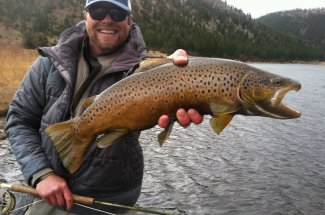 Brown trout fishing on the Missouri River