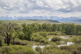 Fishing Montana's Musselshell River