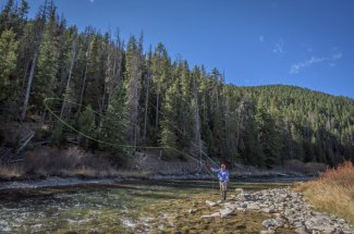 Gallatin River fly fishing trips