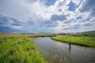Montana guided fly fishing trips