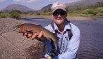 Montana Fishing Guides, Montana Angler