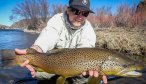 Montana Fly Fishing, Montana Angler